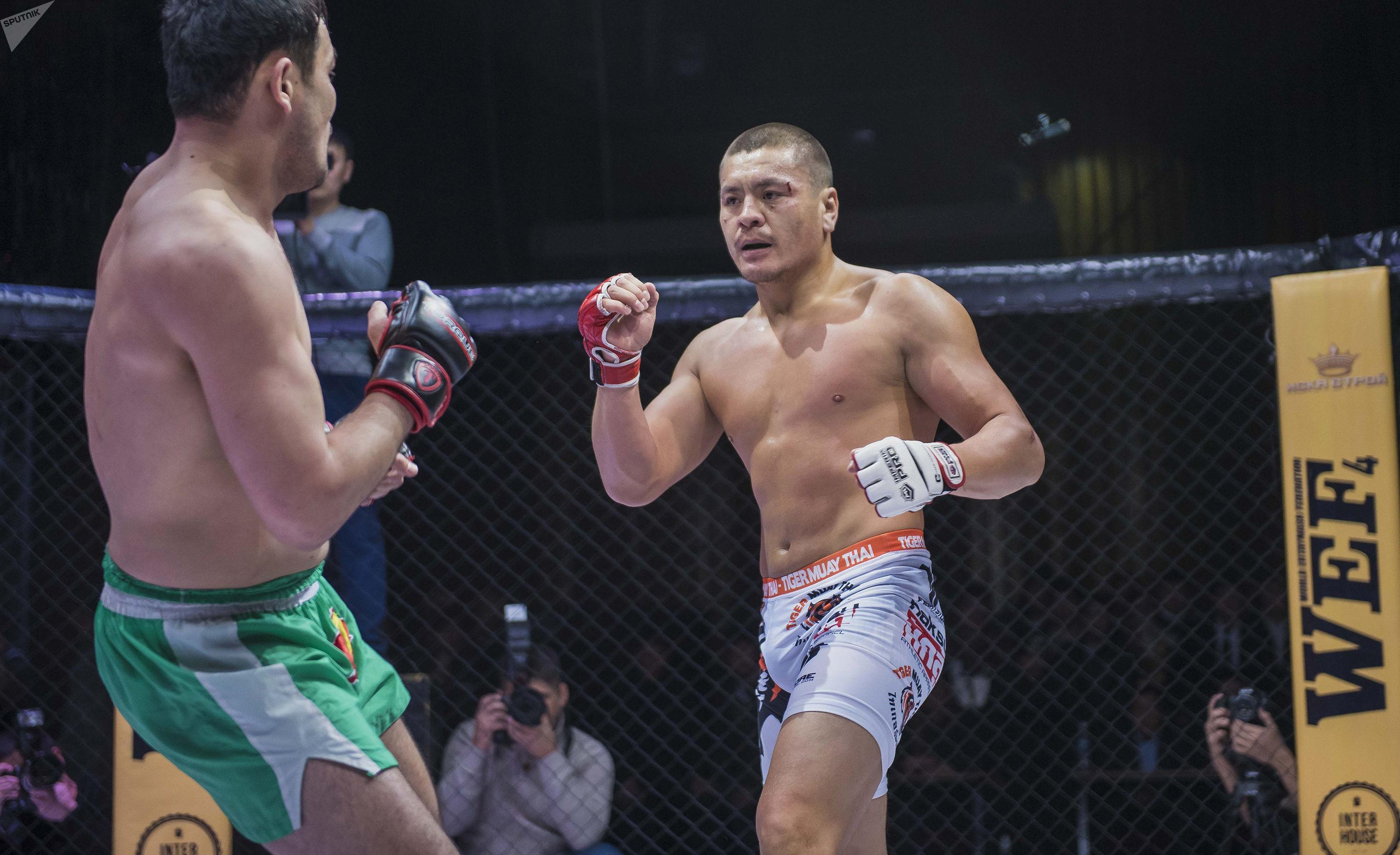 Кыргызстанский боец MMA Мыктыбек Мамасалиев, известный как Ак аюу во время боя