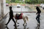 Прохожие на площади Ала-Тоо во время дождя в Бишкеке