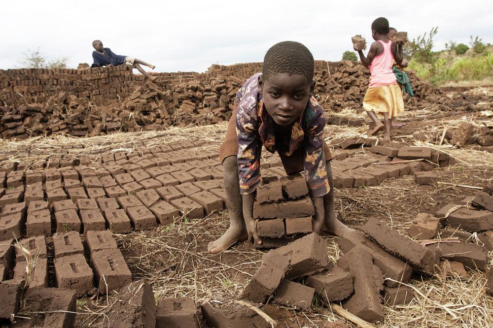 Мальчик перетаскивает глиняные кирпичи на предприятии на окраине столицы Малави