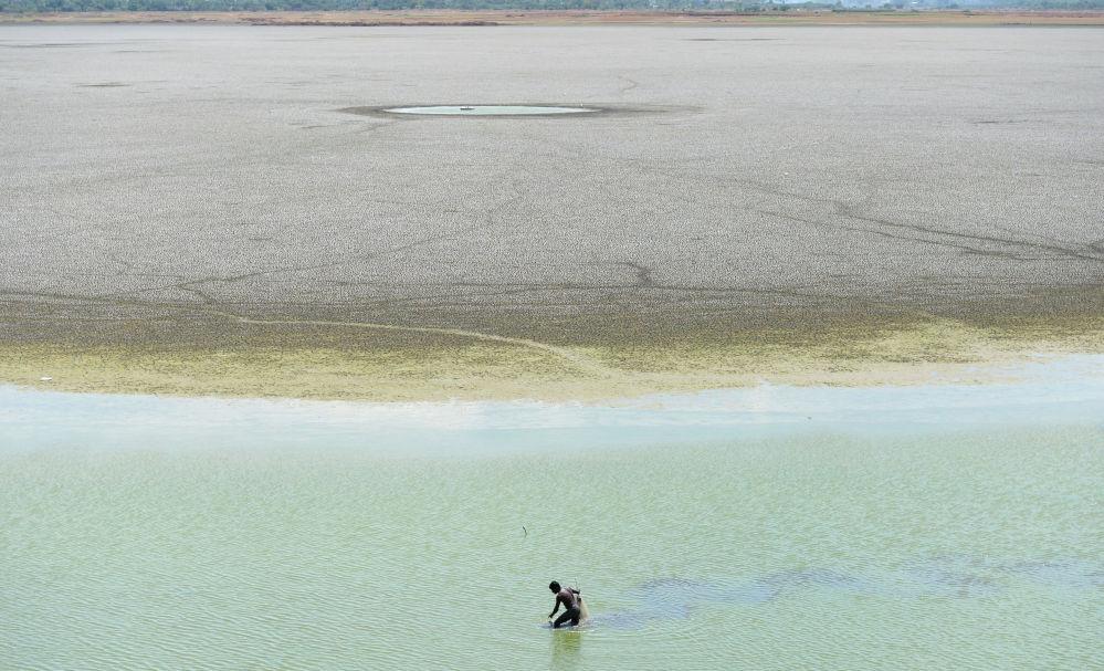 Мужчина ищет рыбу на дне водохранилища Пужал в городе Ченнаи. Задержка муссонных дождей в Индии привела к установлению продолжительной жаркой погоды. Жара иссушает северные и центральные регионы страны уже больше 30 дней. Уровень воды в основных водохранилищах упал до самой низкой отметки за последние 70 лет.