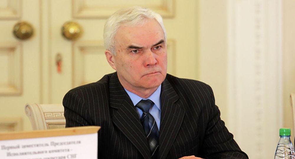 Директор департамента по сотрудничеству в сфере безопасности Исполнительного комитета СНГ Альберт Дружинин. Архивное фото