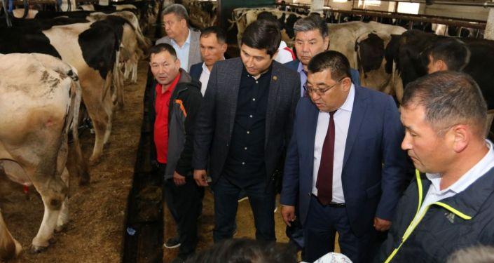 Полномочный представитель Правительства КР в Нарынской области Аманбай Кайыпов встретился с кыргызскими бизнесменами в Москве