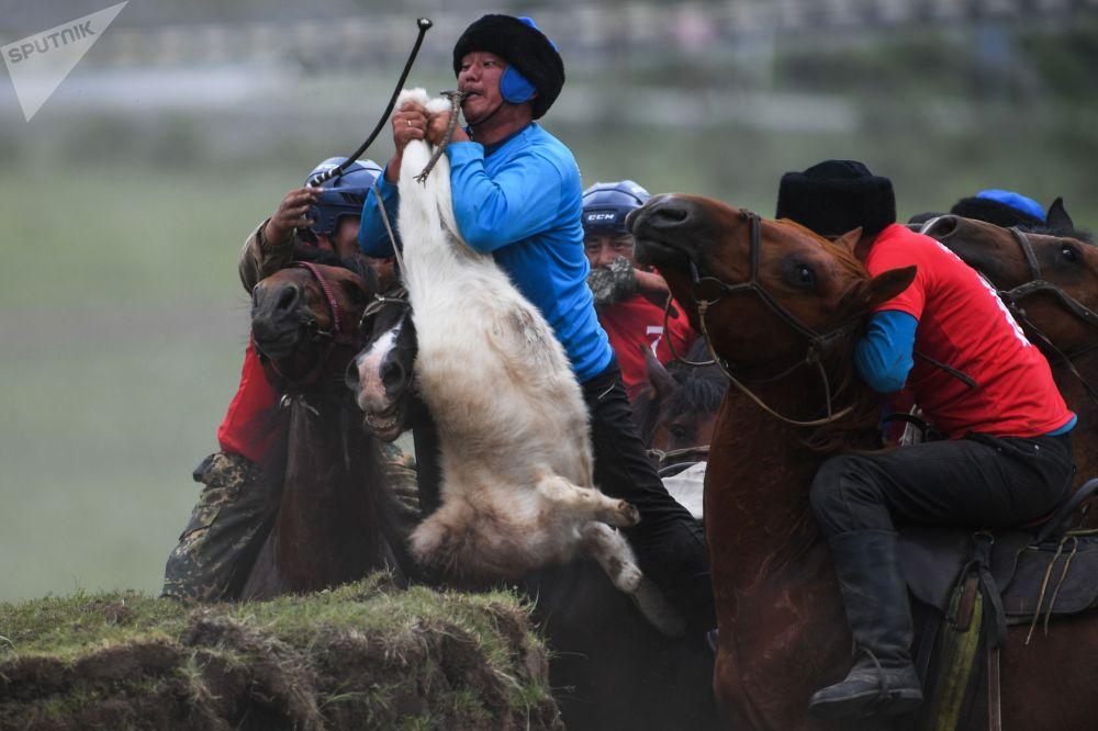 Они выехали из Новосибирска, но лошадей не смогли доставить из-за поломки автомобиля