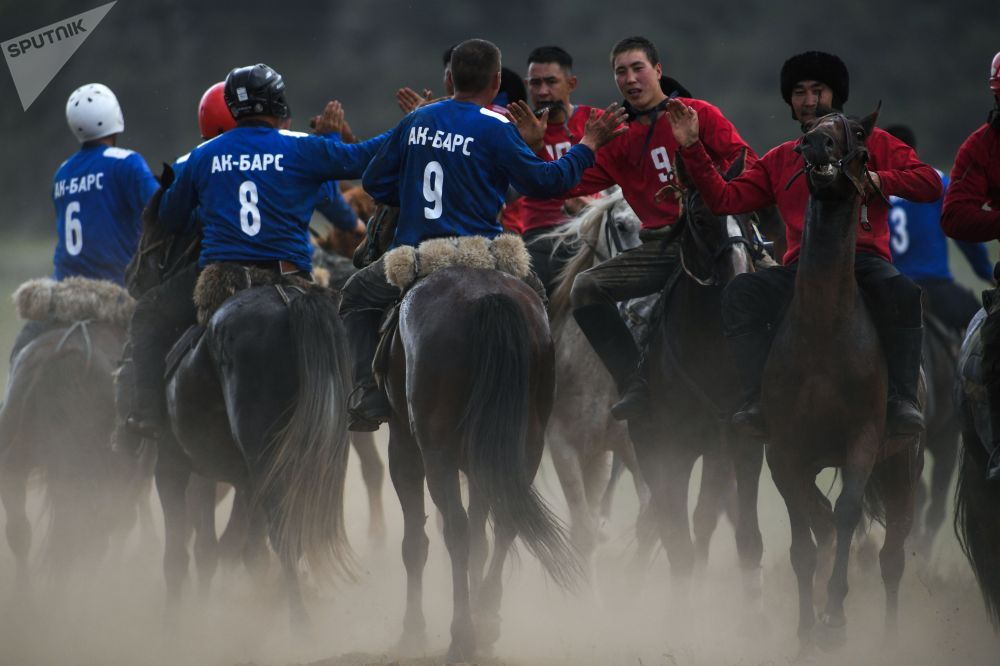 Алтайдын көк бөрү боюнча республикалык чемпионаты жыл сайын өтүп турат экен.