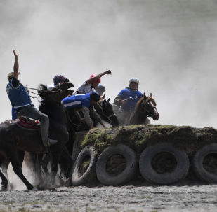 Игроки во время матча на чемпионате Республики Алтай по кок-бору (козлодрание) в Онгудайском районе вблизи села Купчегень.