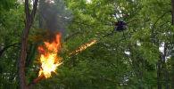 Испытания американского беспилотника-огнемета TF-19 Wasp сняли на видео и выложили в YouTube.