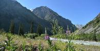 Национальный природный парк Ала-Арча. Архивное фото
