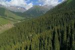 Кыргызстанда жаратылышы ажайып жерлер көп. Алардын бири — Жети-Өгүз өрөөнүндө жайгашкан Көк-Жайык жайлоосу. Бейиштин төрүндөй болуп көз жоосун алган кооздугун Sputnik Кыргызстан агенттиги видеого түшүрдү.