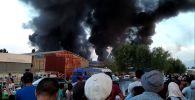 Пламя тушили шесть пожарных расчетов, также было задействовано пять водовозов. В одном ролике редакция Sputnik Кыргызстан собрала все поступившие видео.