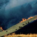 Тушение природных пожаров в калифорнийском округе Контра-Коста