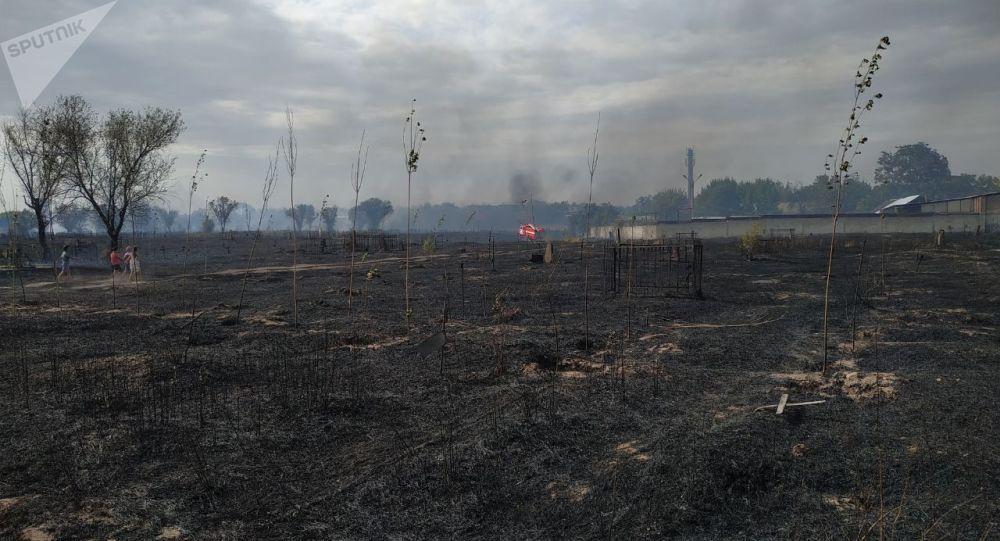 Последствия пожара на кладбище на северо-западе Бишкека