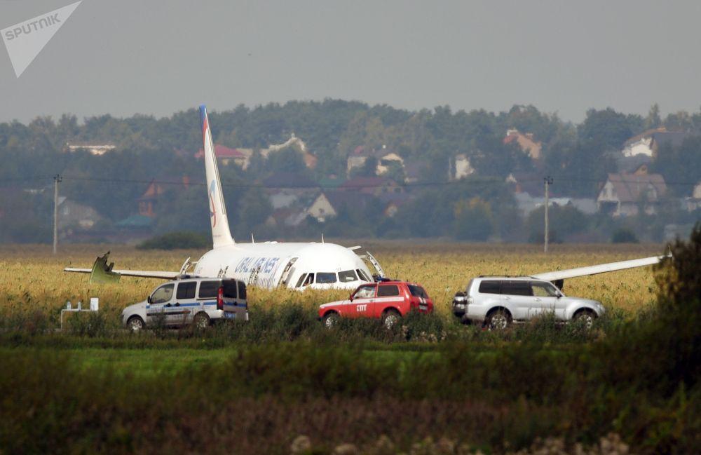 Самолет А-321 авиакомпании Уральские авиалинии с 234 пассажирами на борту (семь членов экипажа) совершил аварийную посадку в Подмосковье. Экипажу судна удалось избежать крупнейшей авиакатастрофы.