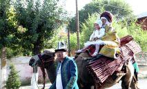 Ош шаарында Ош Фест — 2019 туристтик фестивалынын алкагында беш улуттун өкүлдөрү Жибек Жолу кербени менен өттү.