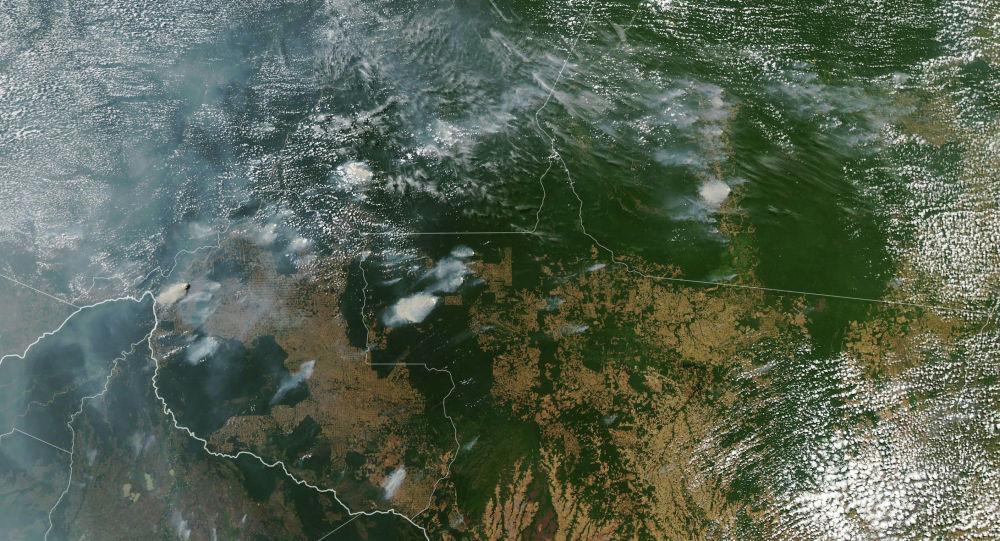 В лесах Амазонии с начала года зафиксировано рекордное количество природных пожаров. Только с января по август в стране полыхали около 73 тысяч лесных пожаров, тогда как за весь 2018 год было зарегистрировано 39 тысяч возгораний. Густой дым уже накрыл несколько бразильских городов.  Тропические леса Амазонии занимают 5,5 миллиона квадратных километров и вырабатывают около 20 процентов кислорода, которым дышит планета.