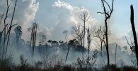 Пожар поглотил район в регионе Альворада-да-Амазония, в Ново Прогрессо, штат Пара. Бразилия, 25 августа 2019 года