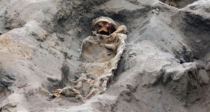 Обнаруженные останки одного из 227 детей, предположительно предложенных в ритуале жертвоприношений доколумбовой культурой Чиму, обнаруженная археологами в секторе Пампа-ла-Крус в Уанчако, в 700 км к северу от Лима.
