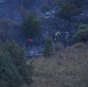 Пользователи социальных сетей начали активно сообщать о пожаре