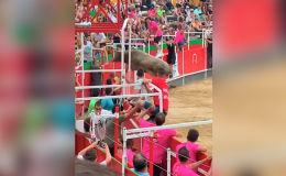 В Испании разъяренный бык напал на толпу зрителей, перепрыгнув через высокие ограждения.