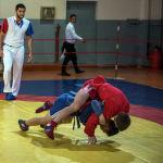 Самбо — это набор самых эффективных приемов из различных видов спорта и боевых искусств