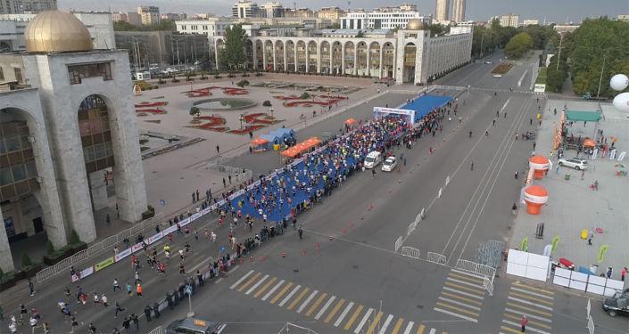 Бишкек шаарында бүгүн, 15-сентябрда, Ак илбирсти сактайбыз деп аталган эл аралык марафон болуп өттү.