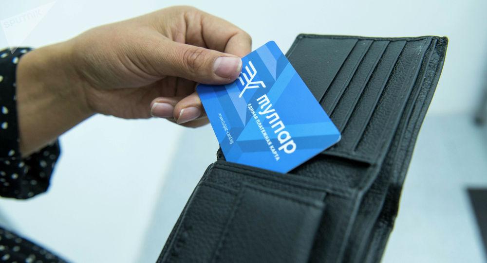 Платные карты Тулпар в руках человека. Архивное фото
