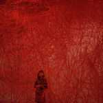 Япониялык сүрөтчү Сиота Тихарунун Багытсыз саякат инсталляциясы