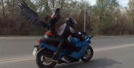 Болжол менен 300дөй байкер мотоцикл жана мопеддин түрү менен мотосезонду жабуу үчүн Бишкекти айланып чыкты.