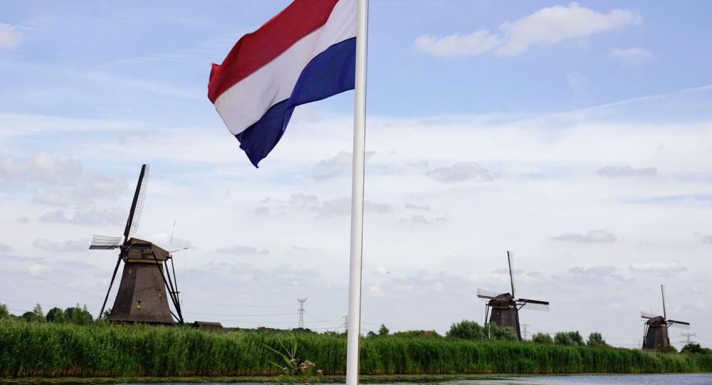 Нидерланды флаг. Архивное фото