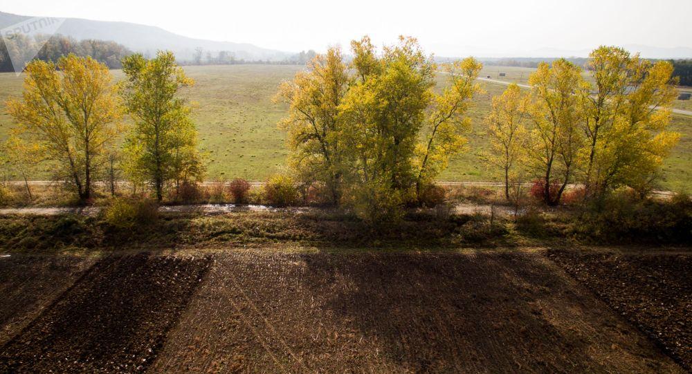 Осенний пейзаж. Архивное фото
