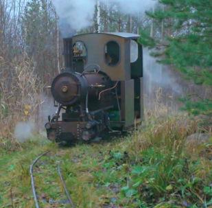 Мужчина 10 лет конструировал железнодорожные пути и паровоз, чтобы возить грунт по участку. Однако дети нашли транспорту другое применение.