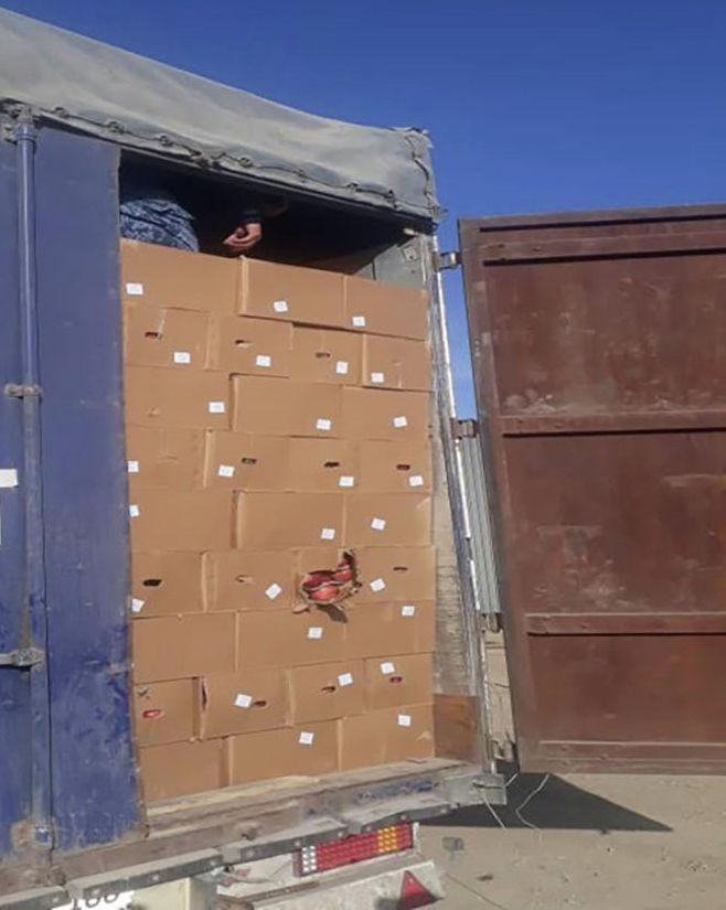 Попытка незаконного вывоза яблок из Кыргызстана