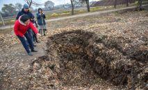 Бишкекзеленхоз муниципалдык ишканасынын кызматкерлери парктар менен көчөлөрдөн чогултулган жалбырактарды кайра иштетип, компост даярдашат.