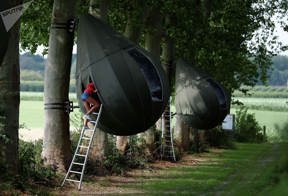 Гость поднимается по лестнице, чтобы войти в палатку в форме капли, висящую на дереве, созданную голландским художником Дре Вапенааром, недалеко от Борглуна. Бельгия, 7 июля 2020 года