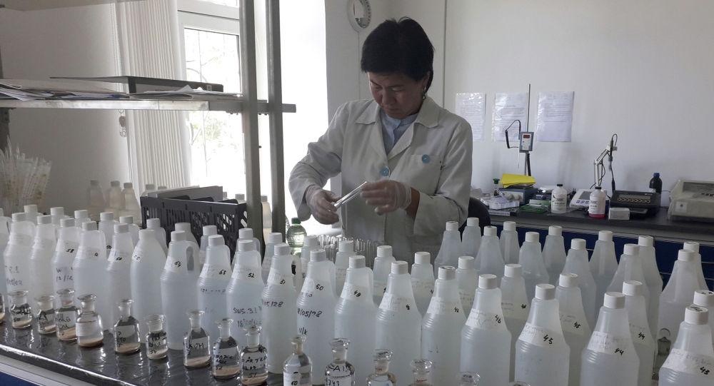Анализ пробы воды в озере Иссык-Куль сотрудниками Госагентства охраны окружающей среды и лесного хозяйства КР