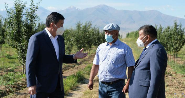 Президент КР Сооронбай Жээнбеков в ходе посещения фермерского хозяйства в селе Кок-Кашат Таласского района