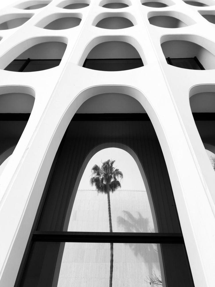 Фото получило второе место в номинации Архитектура