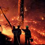 На юго-западе Франции пожар уничтожил около 100 гектаров леса