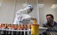 Медицинский работник проводит забор крови на наличие антител к COVID-19