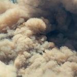 Пожарный самолет улетает после сброса воды в Вишневой долине в Калифорнии (США)