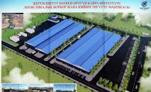 Проект строительства логистического центра по переработке и сортировке баткенского урюка и текстильной фабрики в Баткенской области