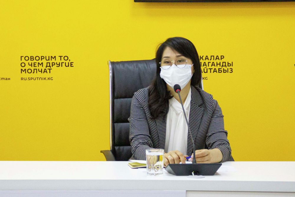 Вице-премьер-министр КР Аида Исмаилова на онлайн-брифинге