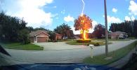 Молния ударила в дерево в совершенно безоблачный день. Свидетелями удивительного зрелища стали жители американского города Тампа (штат Флорида).