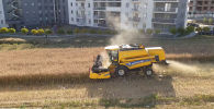 Новые спальные районы в польском городе Люблин начали выстраиваться на территориях местных фермеров. Одни охотно продают свою землю под строительство, в то время как другие категорически против стремительной урбанизации.
