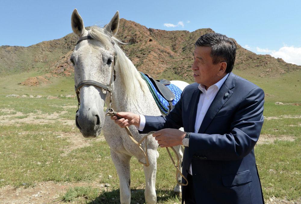 Президент Кыргызской Республики Сооронбай Жээнбеков во время рабочей поездки в Нарынскую область посетил племенной завод Сал-Эм, занимающийся разведением крупного рогатого скота породы Абердин-Ангус, породистых российских лошадей и овец гиссарской породы. 19 августа 2020 года