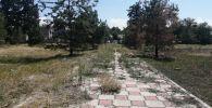 Состояние парка имени Кычана Джакыпова на перекрестке улиц Абдрахманова и Мичурина в Бишкеке