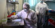Медики в лаборатории. Архивное фото
