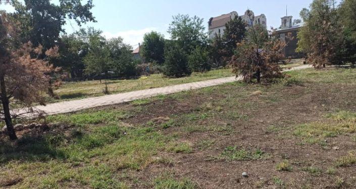 Министерство культуры, информации и туризма КР навело порядок в парке имени Кычана Джакыпова после полученного штрафа