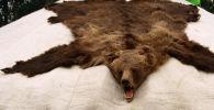 Шкура медведя. Архивное фото