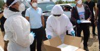 Волонтеры АйжаркынКубанычбеккызы и Замирбек Мусильев во время раздачи медикаментов