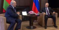В Сочи проходят переговоры президента России Владимира Путина и главы Беларуси Александра Лукашенко.